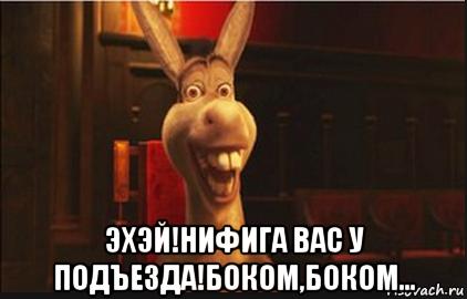 osel-iz-shreka_101551190_orig_